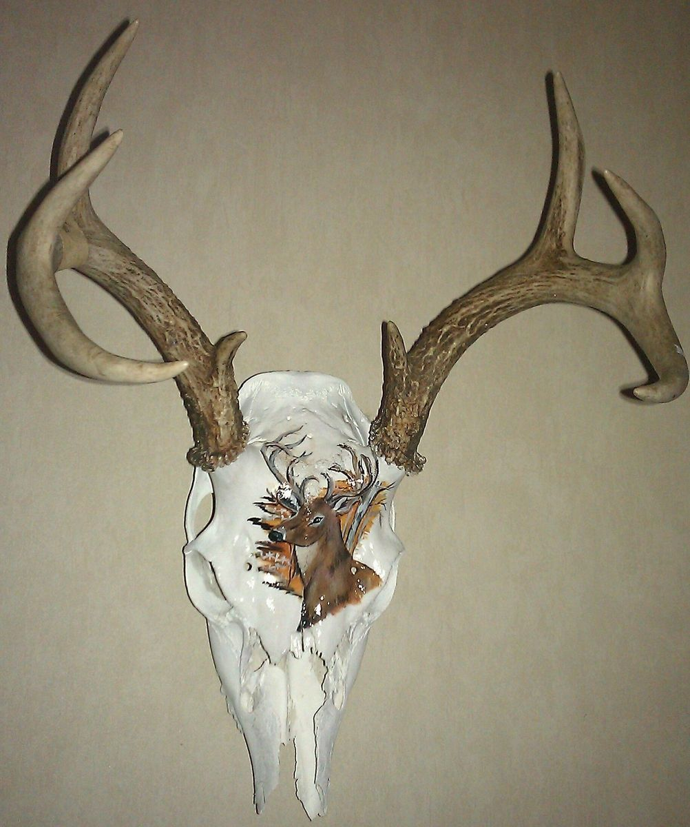 Painted Deer Skull Ideas