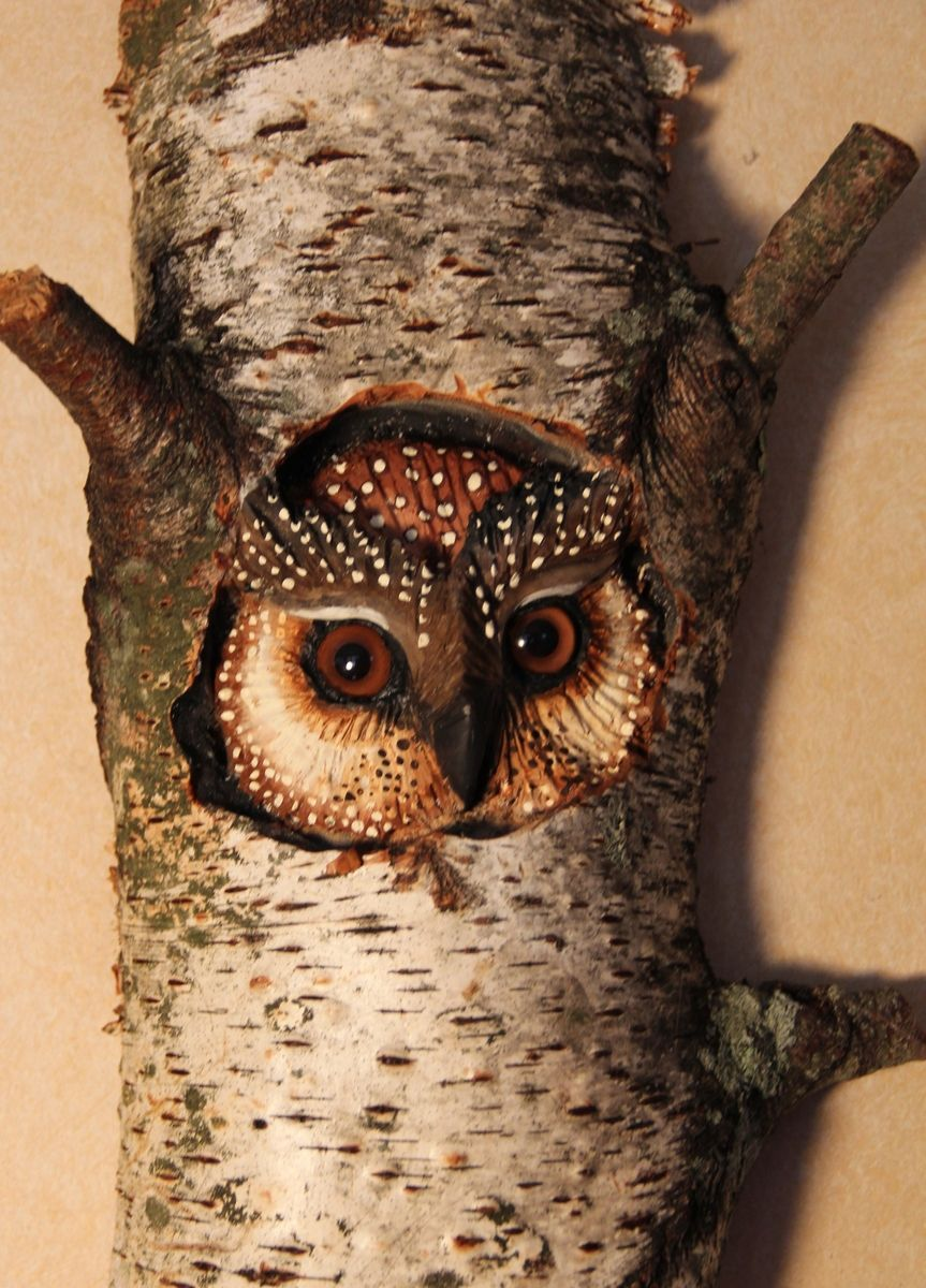 Custom Made Owl Carving Wood Wall Art By Donna Maries