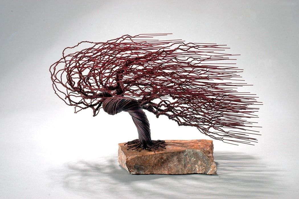 Hand Crafted Windswept Bonsai Tree By Golomb Art