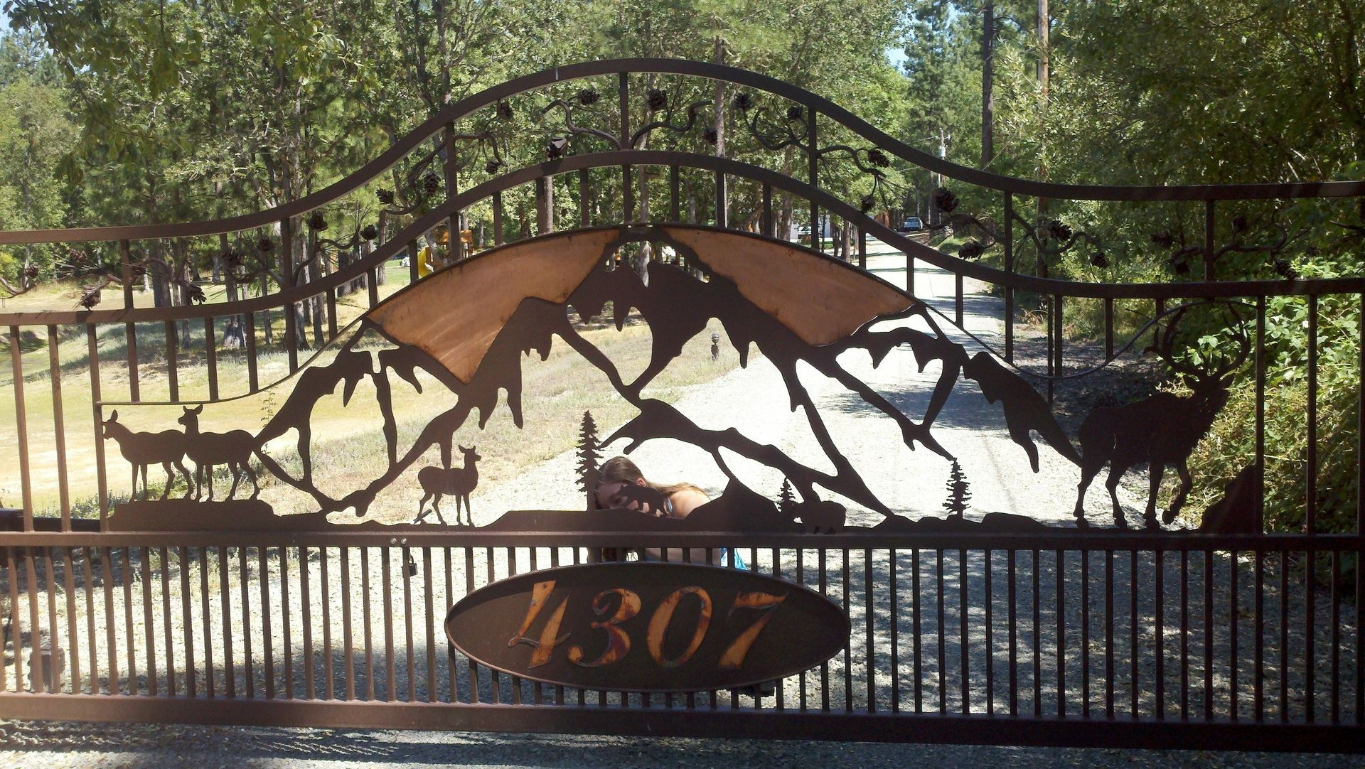Scene Bedroom Ideas Hand Crafted Custom Metal Gate Art By Ftt Design