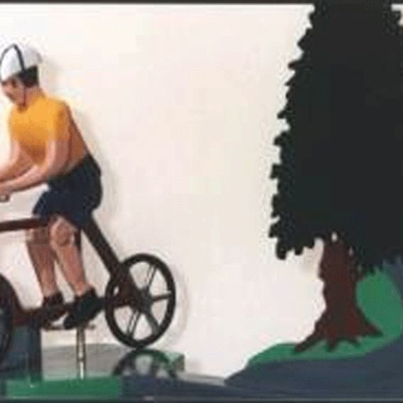 Custom Made Man Or Woman Bicycle Whirligig By Whirligigs