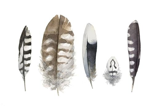 Custom Made Feathers Watercolor Painting