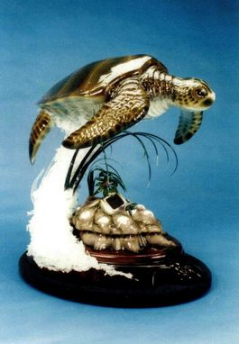 Custom Made Green Sea Turtle Sculpture