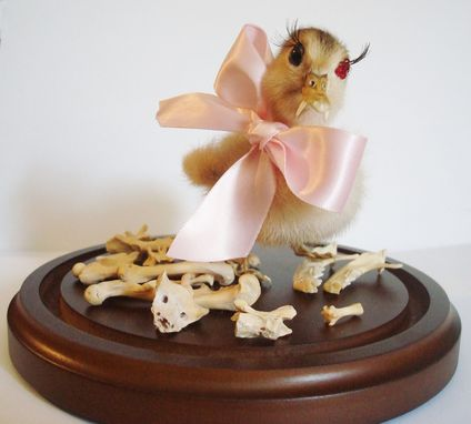 Custom Made Duckling Fantasy Taxidermy