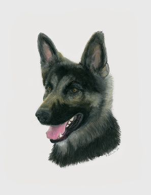 Custom Made German Shepherd - Original Pastel Illustration
