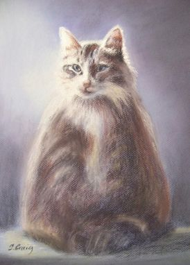 Custom Made Pastel Of Murray, The Cat