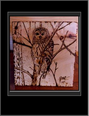 Custom Made Wood Burned Owl, Owl Art, Pyrography, Wood Burnings, Wood Art, Owl Lovers
