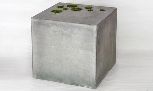 Custom Made Concrete Coffee Table With Moss Planters