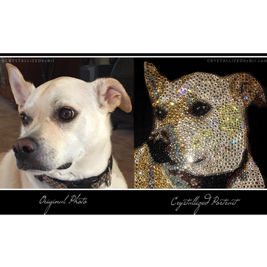 Custom Made Custom Crystallized Pet Portrait Mini Dog Cat Animal Bling Swarovski Crystals