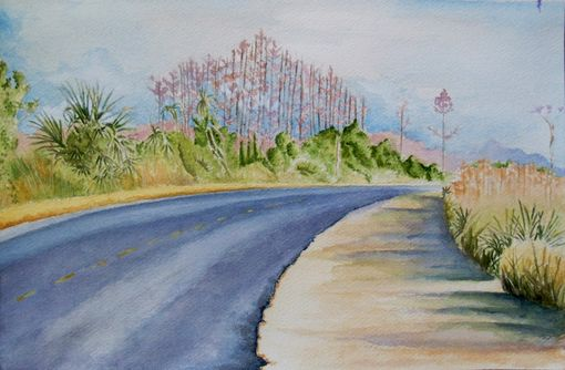Custom Made Original Watercolor Paintings By Artist Jason M Silverman