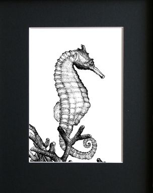 Custom Made Seahorse - Modern Marine Science Illustration With Black Mat