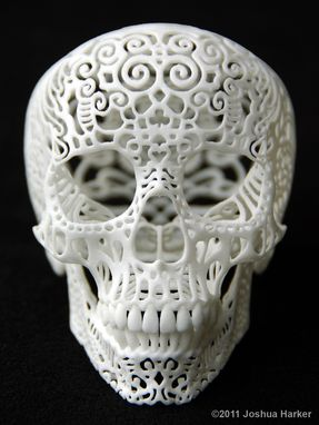 "Custom Made ""Crania Anatomica Filigre"" Skull"