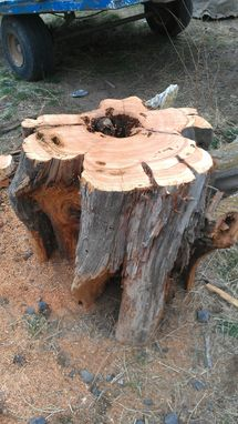 Custom Made Stump Series