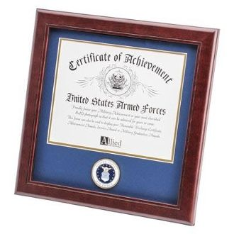 Custom Made U.S. Air Force Medallion Certificate Frame