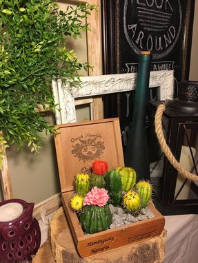 Custom Made Cigar Box Succulents