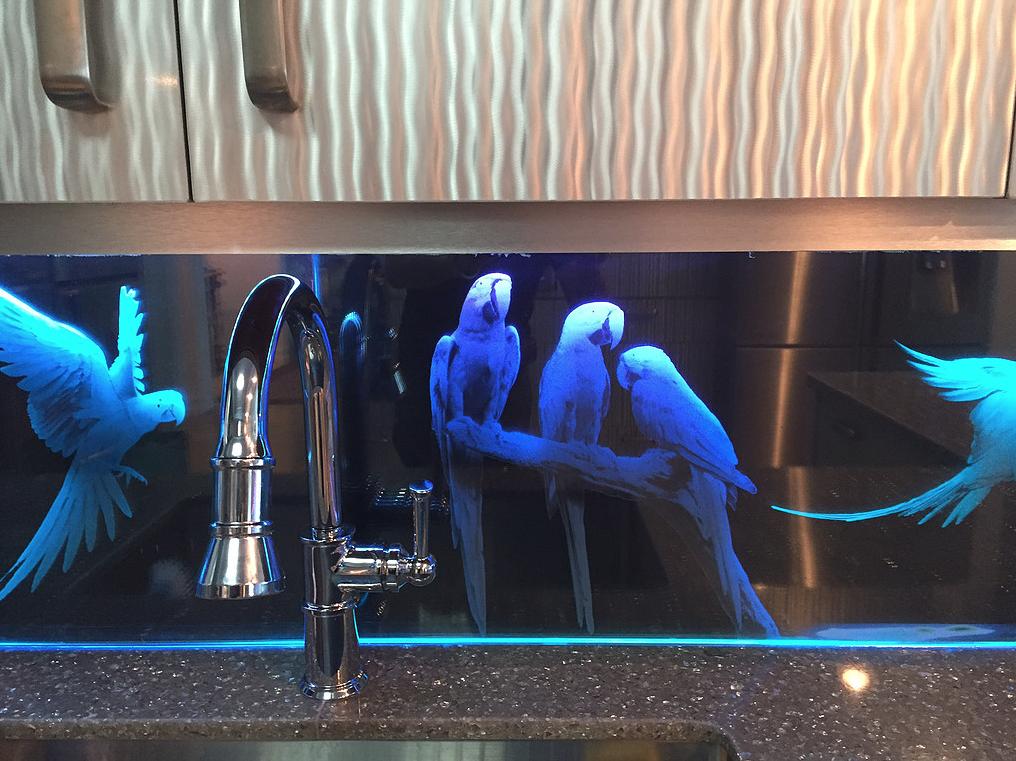 Custom Made Parrots Theme Custom Etched Glass Led Backsplash