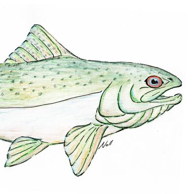 Custom Made Aceo With Original Chinook Salmon Watercolor Painting