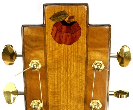 "Custom Made ""Snake Motif"" 12-String Resonator Guitar In Cherry"