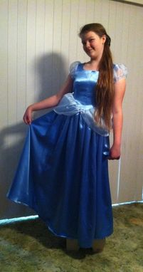 Custom Made Cinderella Costume