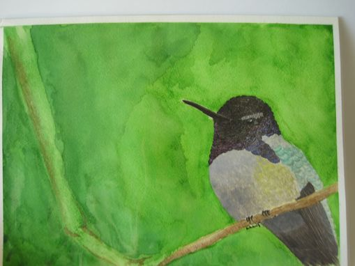 "Custom Made ""Costa's Hummingbird"" Watercolor Painting"