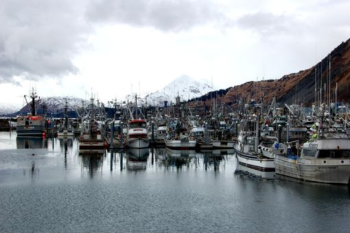 Custom Made Fine Art Photograph Of Kodiak Harbor Fishing Boats