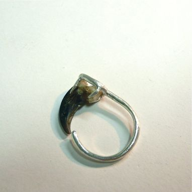 Custom Made Coyote Claw Sterling Silver Ring