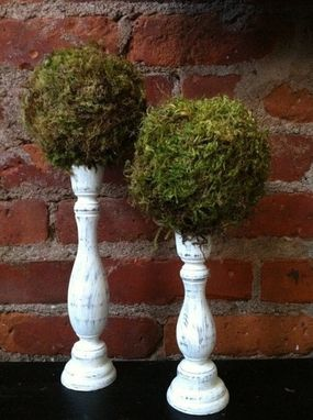 Custom Made Moss Topiary