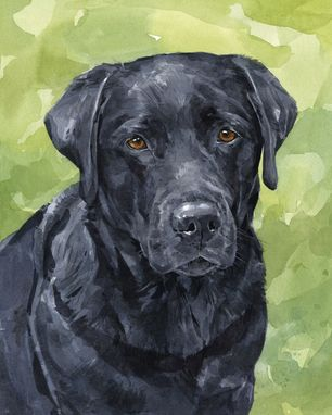Custom Made 11x14 Custom Pet Portrait