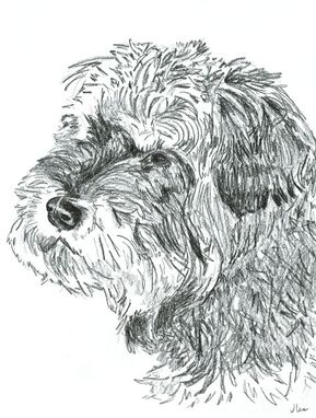 Custom Made 8 X 10 Pet Portrait