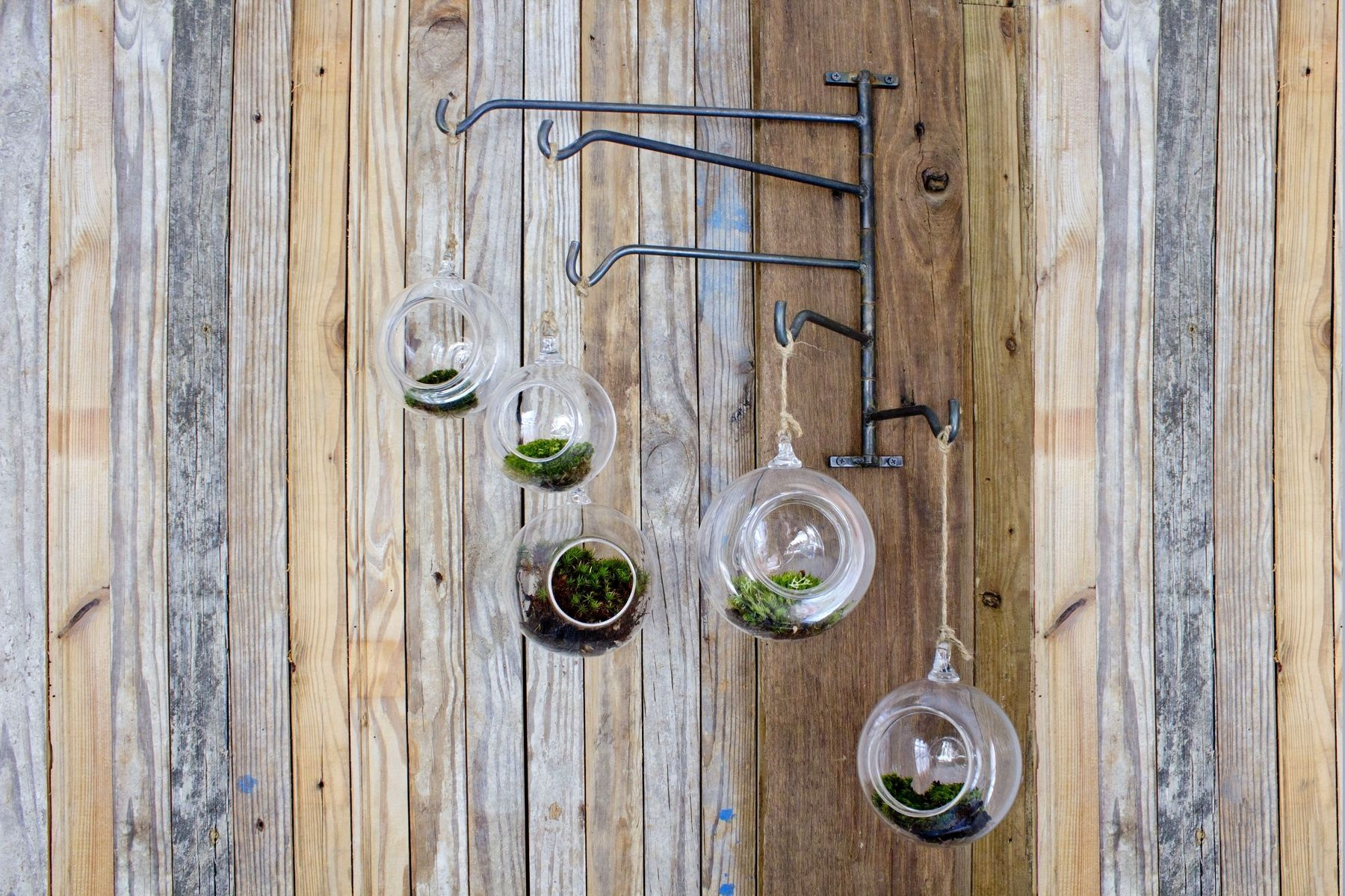 Hand Crafted Hanging Terrarium Swing Rack By New Antiquity Custommade Com