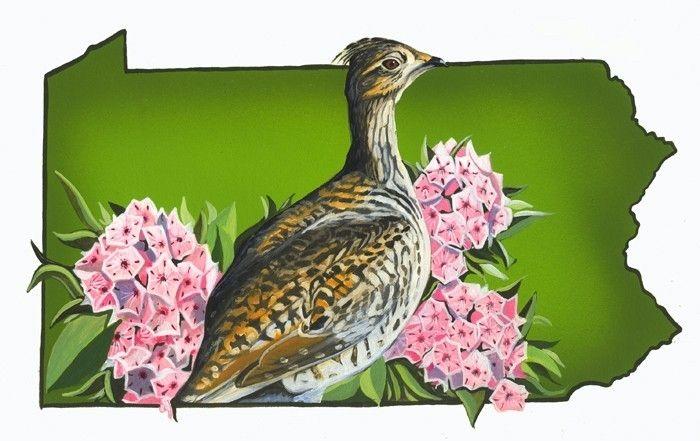 handmade pennsylvania state bird and flower by black leaf studio llc