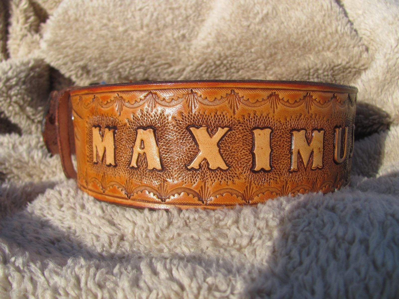 Handmade Extra Large Dog Collar With Wilderness Scene