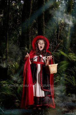 Custom Made Red Riding Hood Girls Storybook Costume Dress