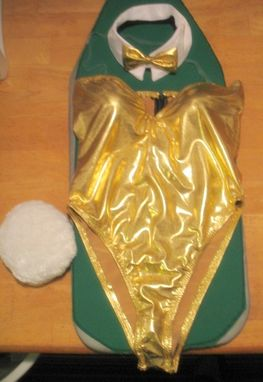 Custom Made Playboy Bunny Costume