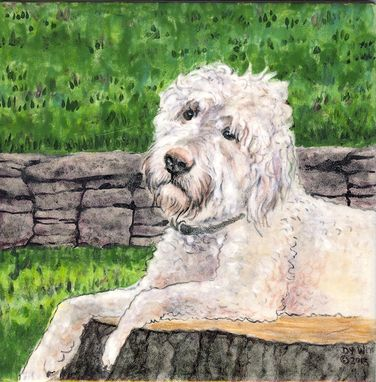 Custom Made Portrait Of Goldendoodle Gus On 8 Inch Tile