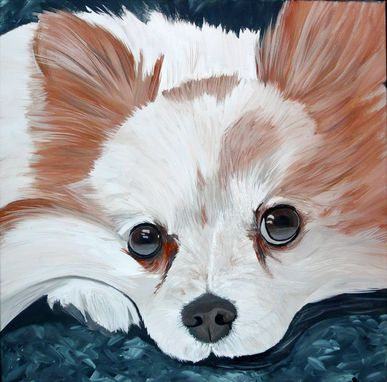 Custom Made Pet Portrait Pomeranian