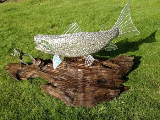 Custom Made Clear Rainbow Trout Chasing A Frog