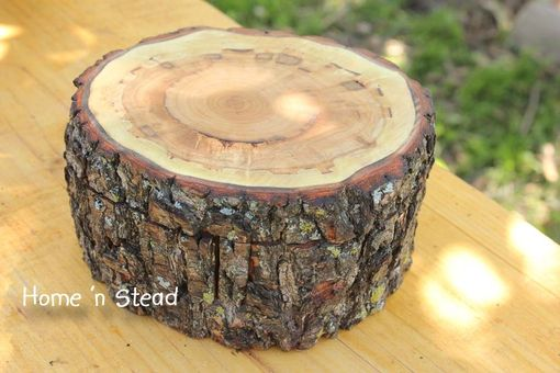 "Custom Made The ""Storage Stump"" 