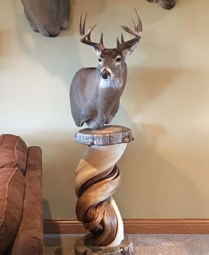 Hand Crafted Shoulder Mount Taxidermy Pedestal Solid