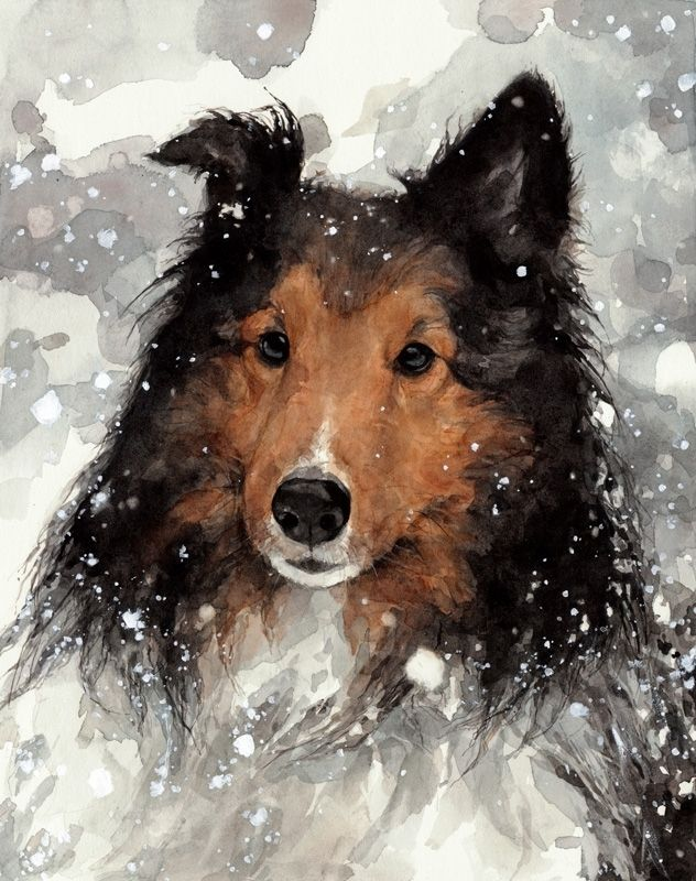 Hand Made Collie In Snow Dog Watercolor Portrait By