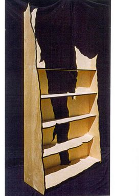 Custom Made Anasazi Bookcase