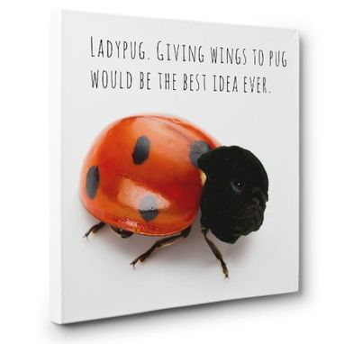 Custom Made Ladypug Hybrid Animal Canvas Wall Art