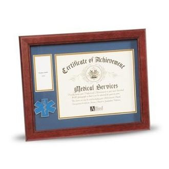 Custom Made Ems Frame 8x10 Ems Medallion Certificate And Medal Frame