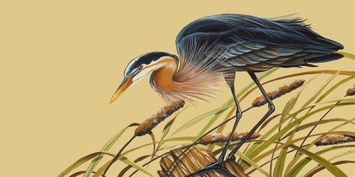 Custom Made Set Of 2 Prints Of Blue Heron  And White Egret