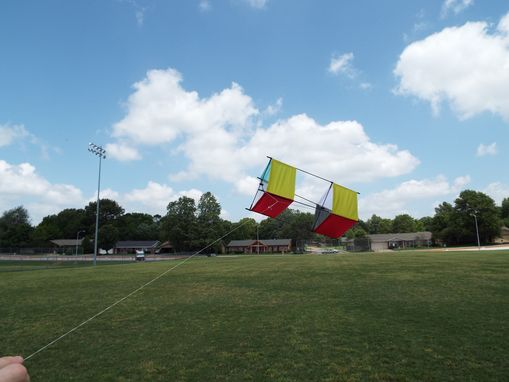 Custom Made Box Kite