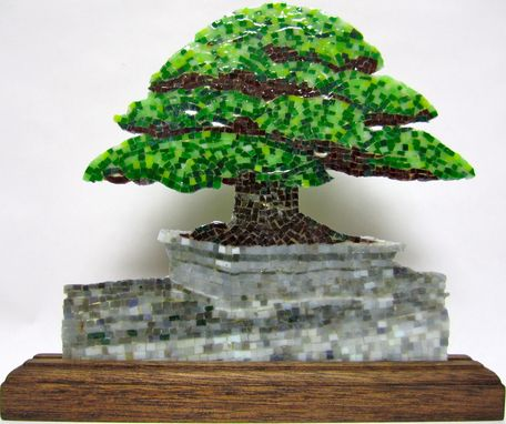 Custom Made Bonzai
