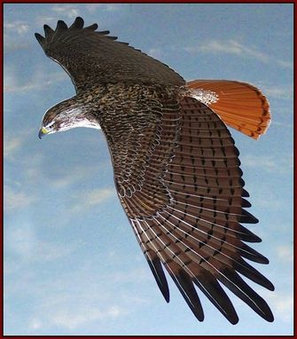 Custom Made Life Size Red-Tailed Hawk Sculpture