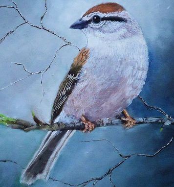 Custom Made Bird Painting, Wildlife Painting: Arizona Native Bird, Chipping Sparrow Acrylic On Canvas