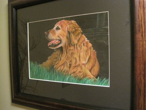 Custom Made Picture Of Tucker - Did A Pencil Crayon