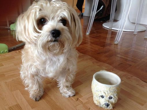 Custom Made Mug That Looks Like Your Pet